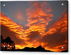 Acrylic Print featuring the photograph Palisade Sunrise by Perspective Imagery