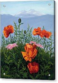 Pallet Knife Poppies Acrylic Print by Mary Giacomini