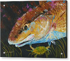 Pallet Knife Redfish And Blue Crab Acrylic Print