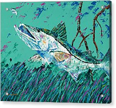 Pallet Knife Snook In The Mangroves Acrylic Print
