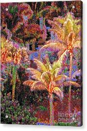 Palm 1008 Acrylic Print