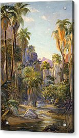 Palm Canyon Acrylic Print by Lewis A Ramsey