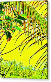 Palm Fragment In Yellow Acrylic Print