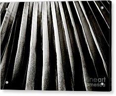 Palm Frond Acrylic Print