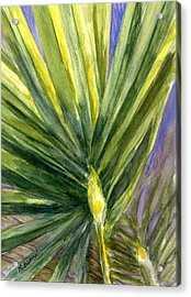 Acrylic Print featuring the painting Palm Frond by Marilyn Barton