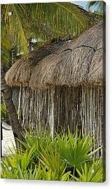 Palm Hut Acrylic Print by Lori Mellen-Pagliaro
