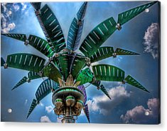 Palm Of Tommorrow Acrylic Print