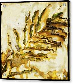 Palm On Wall Acrylic Print by Paul Tokarski