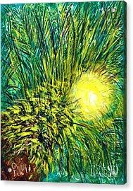 Palm Sunburst  Acrylic Print