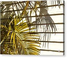 Palm Sunday Acrylic Print by JAMART Photography