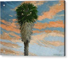 Palm Sunrise Acrylic Print by Robert Rohrich