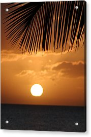 Palm Sunset Hawaii Acrylic Print by Dustin K Ryan