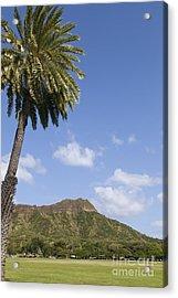 Palm Tree And Diamond Head Acrylic Print by Brandon Tabiolo