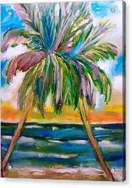 Palm Tree Color Times Two Acrylic Print