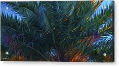Palm Tree In The Sun Acrylic Print by Glenn Gemmell