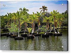 Acrylic Print featuring the photograph Palm Tree Islands by Pamela Walton
