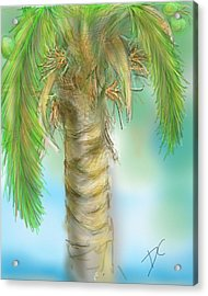 Acrylic Print featuring the digital art Palm Tree Study Two by Darren Cannell