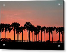 Acrylic Print featuring the photograph Palm Tree Sunset by Joel Witmeyer