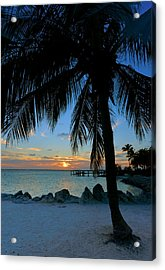 Acrylic Print featuring the photograph Palm Tree Sunset by Stephen  Vecchiotti