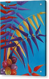 Palm Tree With Coconuts 1 Acrylic Print