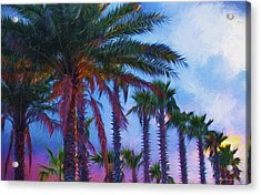 Palm Trees 3 Acrylic Print by Glenn Gemmell