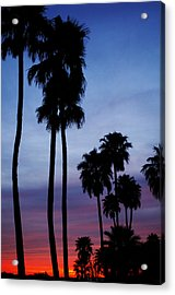 Palm Trees At Sunset Acrylic Print by Jill Reger