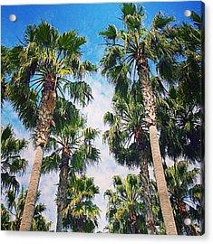 #palm #trees Just Make Me #smile Acrylic Print