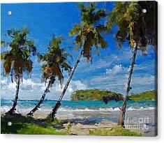 Palm Trees On Sandy Beach Acrylic Print