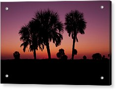 Acrylic Print featuring the photograph Palm Trees Silhouette by Joel Witmeyer