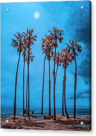 Palm Trees With Sun In Infrared By Cabrillo Beach Acrylic Print by Randall Nyhof
