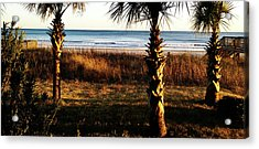 Palm Triangle Acrylic Print