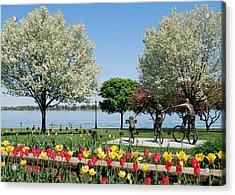 Palmer Park In Spring Acrylic Print