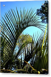 Acrylic Print featuring the painting Palmetto 2 by Renate Nadi Wesley