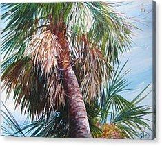 Palmetto In Acrylics Acrylic Print by Gloria Turner