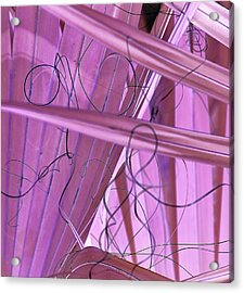Lines, Curves And Highlights Acrylic Print