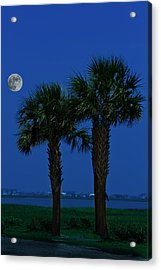 Acrylic Print featuring the photograph Palms And Moon At Morse Park by Bill Barber