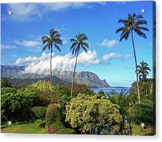Palms At Hanalei Acrylic Print by James Eddy
