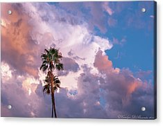 Palms At Sunset Acrylic Print by Carolyn Dalessandro