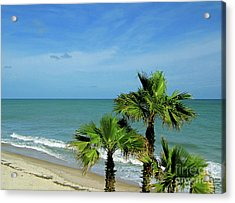 Palms At Vero Beach Acrylic Print