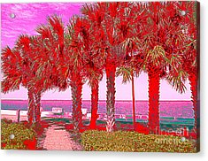 Palms In Red Acrylic Print