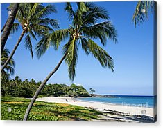 Palms Over Beach II Acrylic Print by Ron Dahlquist - Printscapes