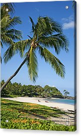 Palms Over Beach Acrylic Print by Ron Dahlquist - Printscapes