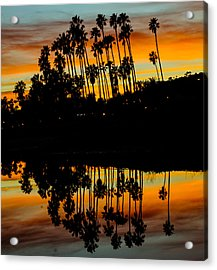 Palms Reflection Acrylic Print