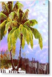 Palms With Sea Oats Acrylic Print