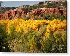 Palo Duro Canyon Fall Colors Acrylic Print