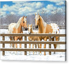 Palomino Appaloosa Horses In Snow Acrylic Print by Crista Forest