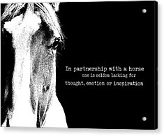 Palomino Art Quote Acrylic Print by JAMART Photography