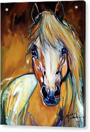 Palomino Wild Abstract Acrylic Print