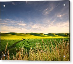 Acrylic Print featuring the photograph Palouse Bounty by Dan Mihai
