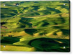 Palouse Contours Acrylic Print by Mike  Dawson
